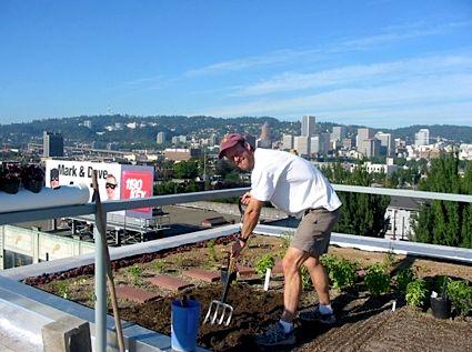 Огород на крыше и другие технологии для обеспечения всего мира едой