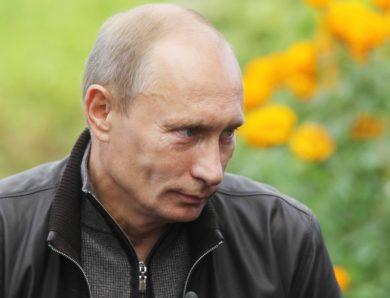 Президент поддержал Единую Россию в стремлении уделять внимание фермерам