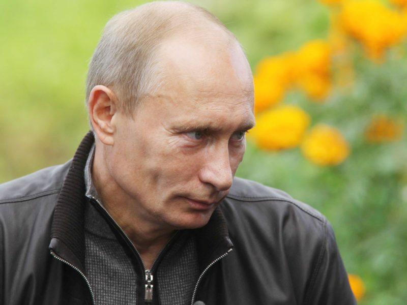 Президент России заявил о поддержке  международных инициатив, направленных на улучшение состояния окружающей среды