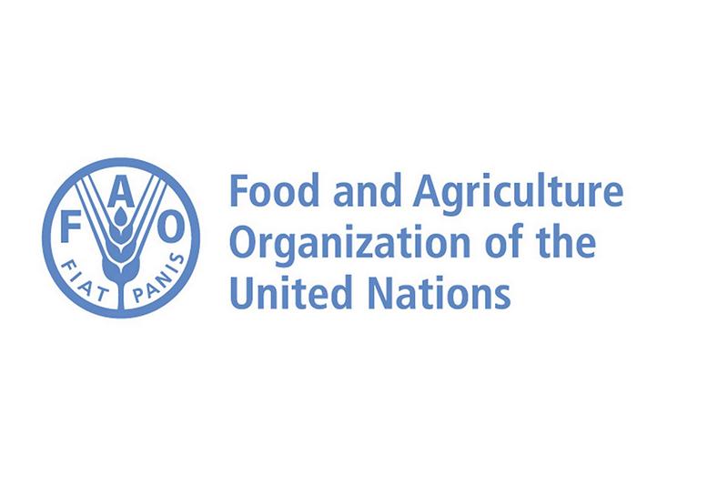 Международная организация расскажет о трендах потребления среди молодёжи
