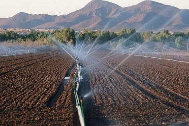 Минсельхоз: необходимо обеспечить устойчивость сельхозпроизводства в зонах рискованного земледелия