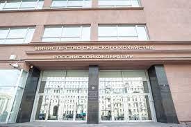 Россия наращивает экспорт — в перспективе кондитерские изделия