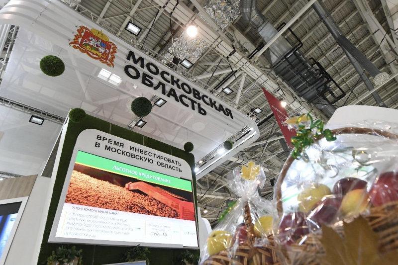 «Золотая осень – 2021» пройдёт в очном формате в парке «Патриот» Московской области
