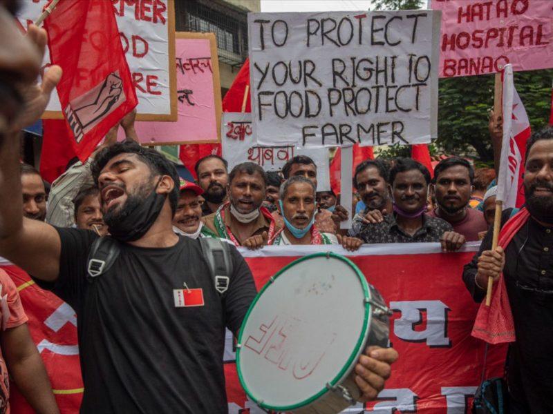 Треть фермеров Индии не довольны ценами на сельскохозяйственную продукцию